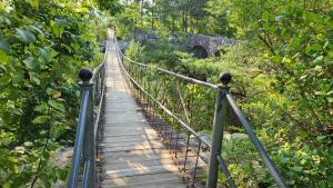 Swinging bridge at Rock City